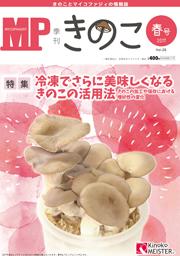 mag11